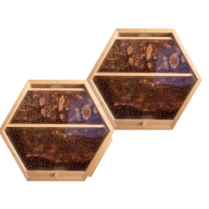 2 hex hives