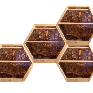 4 hex hives